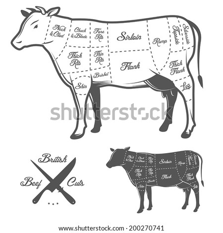 British cuts of beef diagram - stock vector