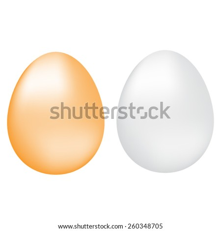 Brown and white eggs with reflection on white background, vector