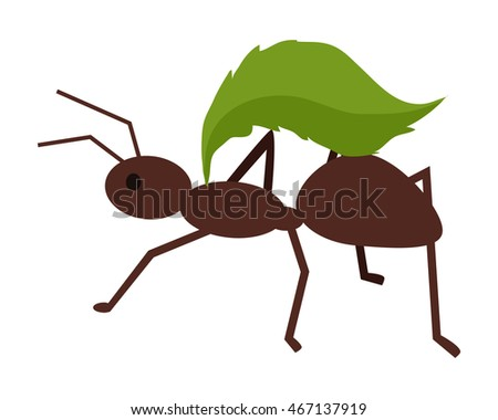 Can Ants Enter Your House Through Your Kitchen Sink