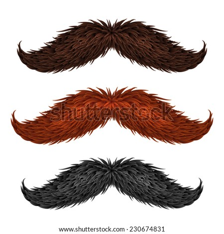 Brown, black and ginger isolated vector mustaches set