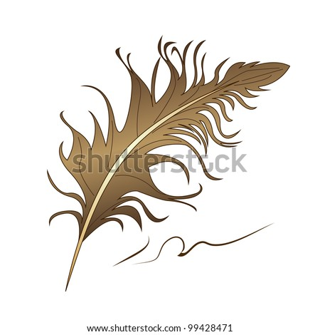 brown feather isolated on white background - stock vector