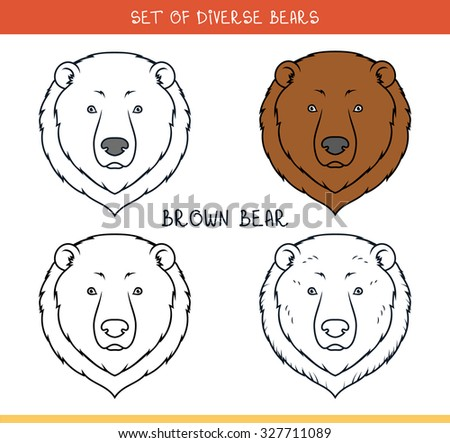 Brown grizzly bear. Set isolated heads of bear in color, lines. Heads for design. Template of heads. Hipster style. Animation bear. Elements for labels and advertising production. Print for the press - stock vector