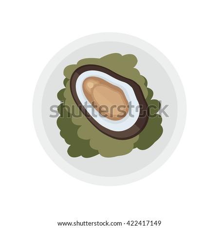brown shellfish and salad vector - stock vector
