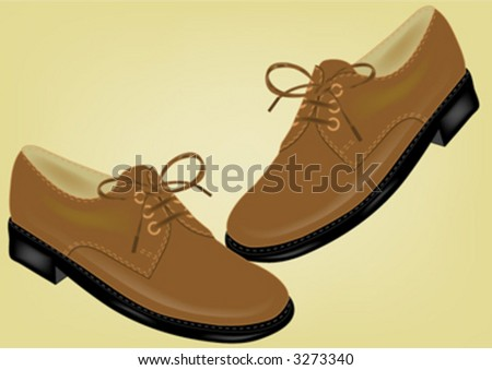 brown  shoes - stock vector