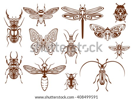 Brown tribal butterfly, bee, moth, dragonfly, wasp, ladybug, scarab and stag beetles, bumblebee, firefly and shield bugs. Decorative insects, adorned by ethnic ornaments - stock vector