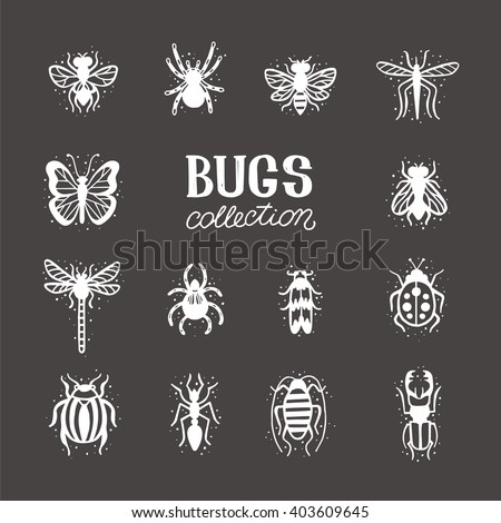 Bugs and beetles vector set. Insects on the black background. Mole, tarantula, bee, spider, fly, dragonfly, mosquito, gnat, butterfly, ladybug, stag-beetle, colorado beetle, ant, cockroach. - stock vector