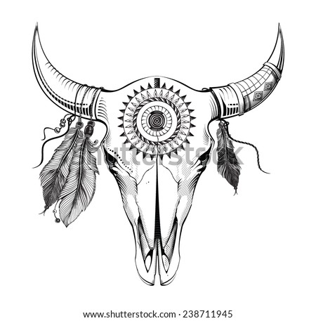Bull skull  - stock vector