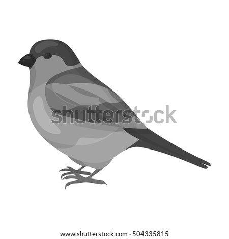 Bullfinch icon in monochrome style isolated on white background. Bird symbol stock vector illustration.