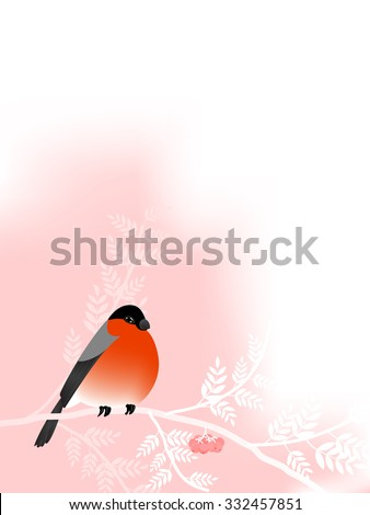 Bullfinch on white branch with berries of mountain ash. Greeting card