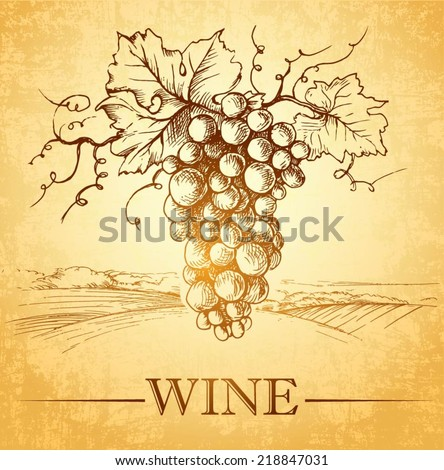 Bunch of grapes for label of wine