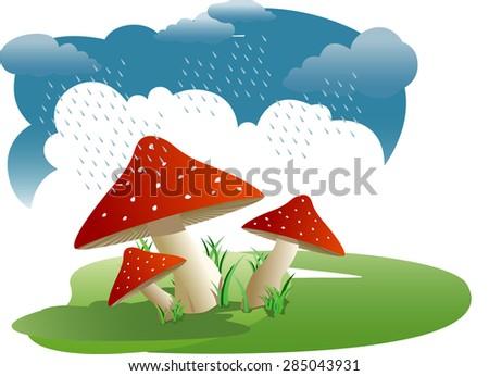 Bunch of wild mushrooms - stock vector