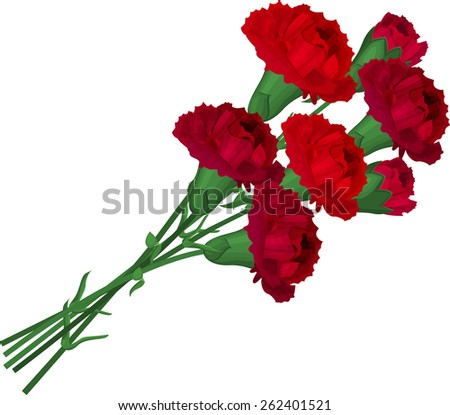 Bunch with  red carnations - stock vector