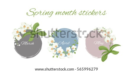 bundle of vector illustration with orchids; round, colorful background; season greetings, stickers, icons also a generic template of an invitation (wedding, birthday, anniversary, other festive event)