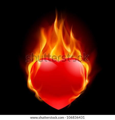 Burning Heart. Illustration for design on black background - stock vector