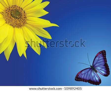 Butterflies flying by near a sunflower over blue sky.Banner size - stock vector