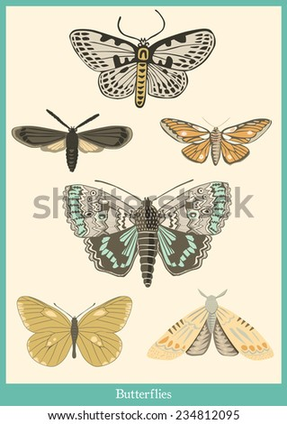 Butterflies poster - stock vector