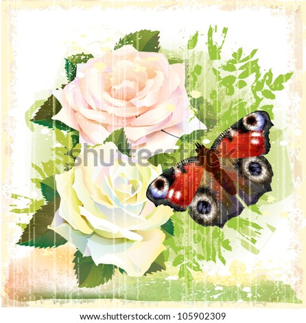 Butterfly and roses - stock vector