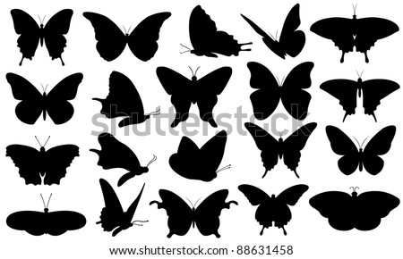 butterfly collage isolated on white - stock vector