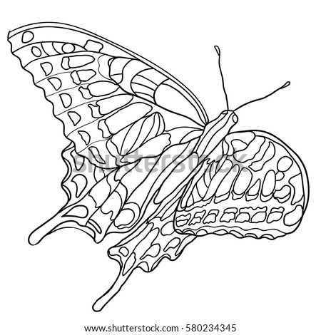 butterfly coloring book for adult and older children coloring page with decorative vintage - Butterfly Coloring Book