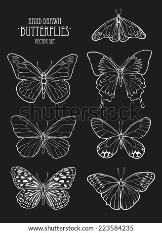 Butterfly set / hand drawn vector set - stock vector