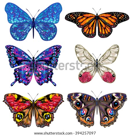 Butterfly Set Vector Colorful Butterflies Butterflies Stock Vector ...