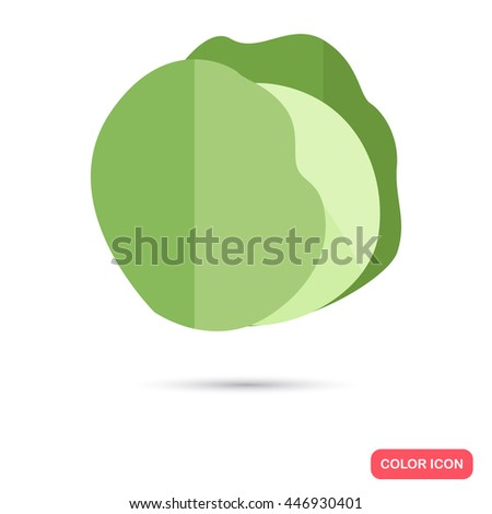 Cabbage color flat icon