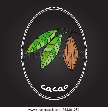 Cacao fruits and leaves - stock vector
