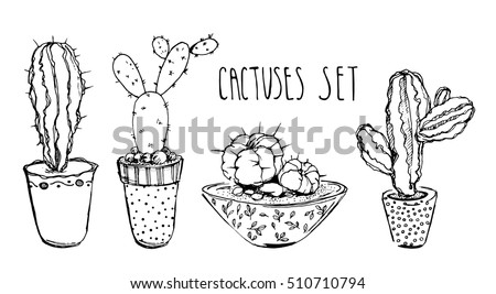 house plants drawing. plants in pots painted black line on a white background vector house drawing