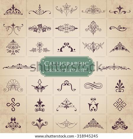 Calligraphic design elements - Vector set - stock vector
