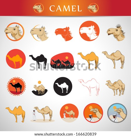Camel Icons Set - Isolated On Gray Background - Vector Illustration, Graphic Design Editable For Your Design. - stock vector