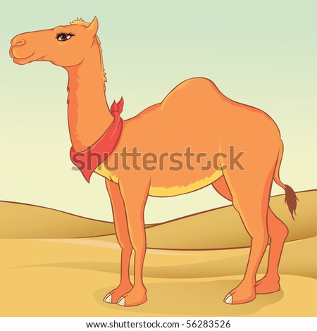 camel illustration - stock vector
