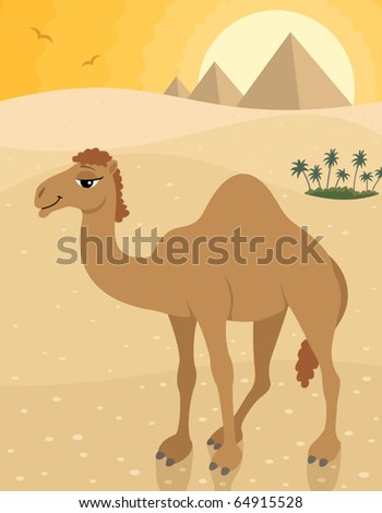 Camel in desert posing in front of pyramids.