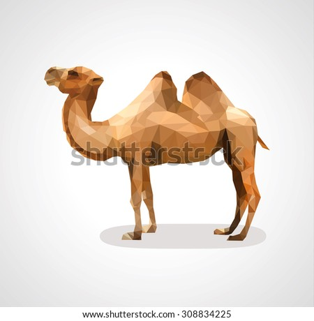 Camel low polygon polygon on a white background