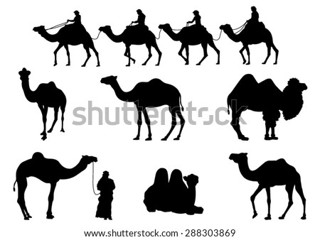 Camel Silhouettes. Vector Image - stock vector