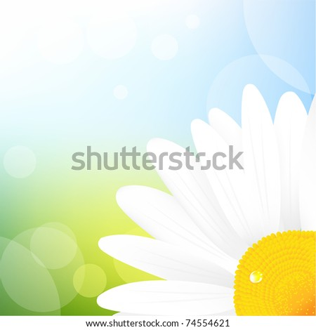 Camomile And Blue Sky, Vector Illustration - stock vector