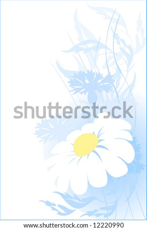 camomile. floral abstract for you design