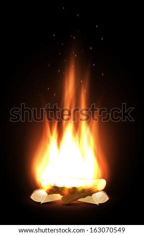 Campfire in dark - stock vector