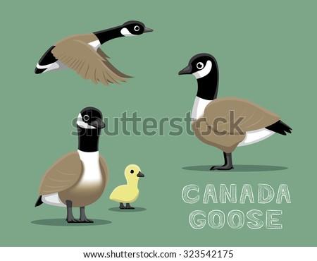 Canada Goose Cartoon Vector Illustration - stock vector