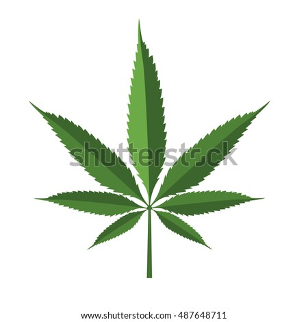 Cannabis leaf icon isolated on white background, vector illustration.
