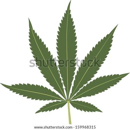 Cannabis leaf isolated on white background. Marijuana leaf silhouette. Vector illustration. - stock vector