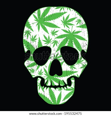 Cannabis leafs and skull on black grunge background - stock vector