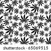 cannabis seamless pattern in vector format - stock vector