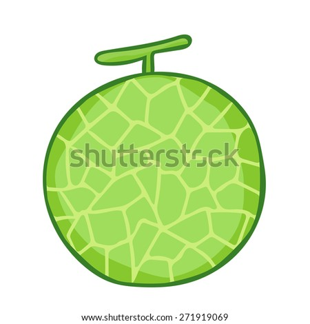 cantaloupe isolated illustration on white background
