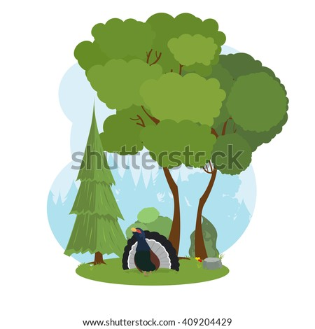 Capercaillie in the forest. Forest grouse. vector. - stock vector