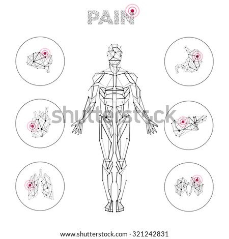 Carcass polygonal geometric lines Human with internal organs pain set composition on white background - stock vector