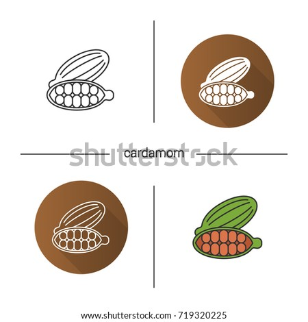 Cardamom icon. Flat design, linear and color styles. Isolated vector illustrations
