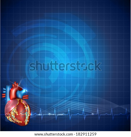 Cardiology technology background, detailed human heart anatomy and normal cardiogram rhythm, beautiful blue color design. - stock vector