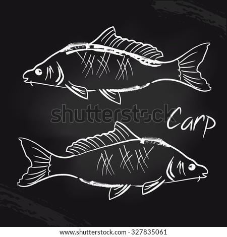 Carps on the black board. Wine sketch. Vector isolated illustration. Ink. Hand drawn. Illustration for cooking site, menus, books. - stock vector