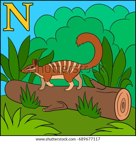 Cartoon Animals Alphabet. N Is For Numbat.
