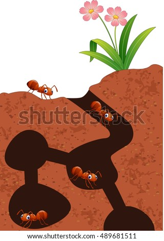 Red Ant Stock Images, Royalty-Free Images & Vectors | Shutterstock